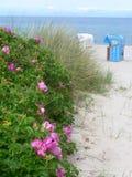 Um dia ensolarado na praia Fotos de Stock