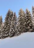 Um dia ensolarado no Mountians no inverno fotos de stock royalty free