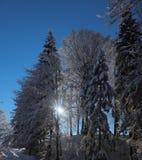 Um dia ensolarado no Mountians no inverno imagens de stock royalty free