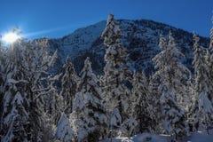 Um dia ensolarado no Mountians no inverno imagens de stock