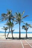 Um dia na praia Foto de Stock