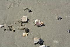 Um dia na praia Fotos de Stock