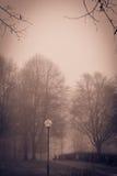 Um dia nevoento fotos de stock