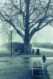 Um dia nevoento fotografia de stock royalty free