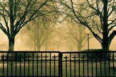 Um dia nevoento imagens de stock