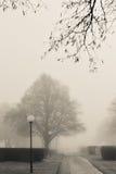 Um dia nevoento foto de stock