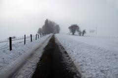 Um dia nevoento no inverno fotos de stock royalty free