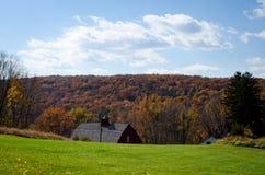 Folhagem de outono de Connecticut Fotografia de Stock