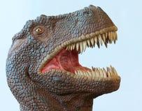 Um dinossauro de Rex do Tyrannosaurus com maxilas pasmado Foto de Stock