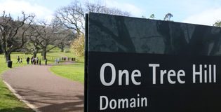 Um domínio do monte da árvore no parque de Cornualha em Auckland Nova Zelândia Foto de Stock