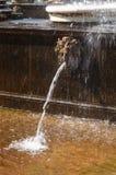 Um dos mascarons, a cascata do leão Fotografia de Stock Royalty Free