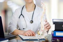 Um doutor na tabela que guarda um esqueleto da rotação com peça da pelve fotografia de stock