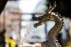 Um dragão de água foto de stock