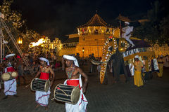 Um elefante do ceremonial desfila após o templo da relíquia sagrado do dente em Kandy em Sri Lanka Imagem de Stock