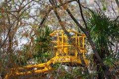 Um elevador de frete amarelo no meio de um jardim botânico Foto de Stock Royalty Free