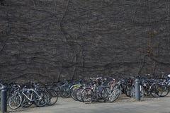 Um emaranhado das bicicletas que inclinam-se em se na cidade da universidade Imagens de Stock