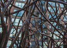 Um emaranhado do metal Fotos de Stock