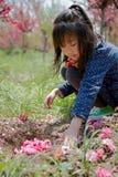 Um enterro da menina as flores Imagens de Stock Royalty Free