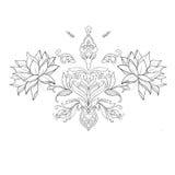 Um esboço de lótus bonitos em um ornamento gracioso em um fundo branco Fotos de Stock