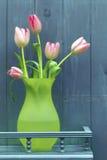 Arranjo da tulipa Fotografia de Stock
