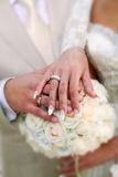 Um etude do casamento está nas cores, anéis de casamentos imagem de stock royalty free