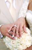 Um etude do casamento está nas cores, anéis de casamentos imagem de stock
