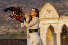 Um falcão moreno latino-americano bonito de Poses Outdoors With A do modelo na fazenda de A fotos de stock