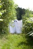 Um fantasma branco na floresta imagens de stock royalty free