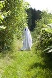 Um fantasma branco na floresta fotos de stock royalty free
