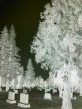 Um fantasma gosta da imagem Fotografia de Stock Royalty Free