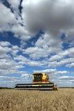Um fazendeiro colhe um prado do broadacre do trigo Imagem de Stock Royalty Free