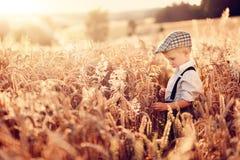 Um fazendeiro do rapaz pequeno está estando no campo da grão Imagem de Stock
