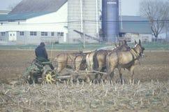 Um fazendeiro e um cavalo que aram os campos imagens de stock