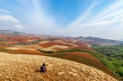 Um fazendeiro fêmea está tomando uma ruptura em um campo de trigo na terra vermelha ou na paleta chamada de Deus Foto de Stock
