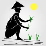 Um fazendeiro que trabalha em campos do arroz ilustração do vetor