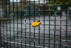 Um fechamento amarelo romântico do amor em uma cerca em Londres foto de stock