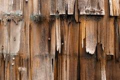 Um fim acima do resistido e revestimento de madeira rotting foto de stock royalty free