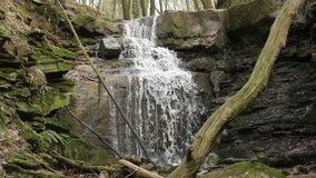 Um fluxo/cachoeira do rio no Margarethenschlucht fotografia de stock royalty free