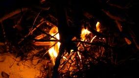 Um fogo do acampamento na costa do Mar Negro profundamente na noite video estoque