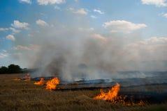 Um fogo em um campo de trigo Fotografia de Stock