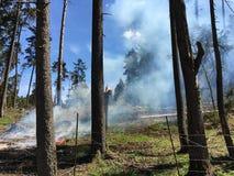 Um fogo no lugar do registro Fotos de Stock Royalty Free