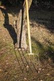 Um forcado que inclina-se contra uma árvore no por do sol Imagem de Stock Royalty Free