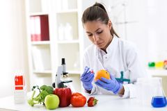 , um Früchte zu tragen der neue Probe setzende und cheking Wissenschaftler resultiert an CLI lizenzfreies stockfoto