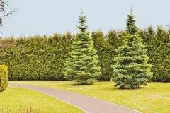 Um fragmento de um parque da paisagem Imagens de Stock