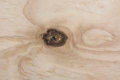 Um fragmento do fim da madeira compensada acima com nó imagem de stock