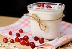 Um frasco do iogurte caseiro com arandos e a aveia frescos lasca-se Imagens de Stock
