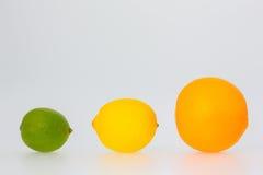 Uma fileira de frutos alaranjados do limão e do cal Fotografia de Stock Royalty Free