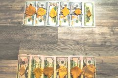 Um fundo da árvore, muitos dólares americanos Fotos de Stock