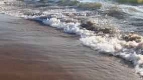 Um fundo de um Sandy Beach vídeos de arquivo