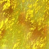 Um fundo do ouro da cor Fotografia de Stock